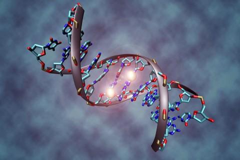 1024px-DNA_methylation