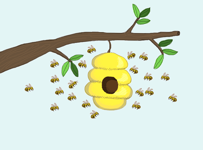 SFU professor Mark Winston writes in his book about how humans can learn from bees' social nature. - Image by Janis McMath