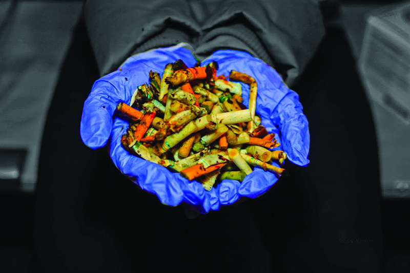 Each year, Canadians litter 16 billion cigarette butts.  - Photo courtesy of University Communications