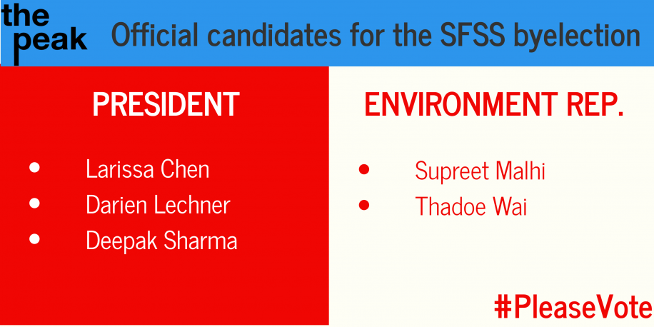 Along with the presidential candidates, the position of environment rep. finally sees a candidate in 2016, after there were no candidates for the position in the spring.