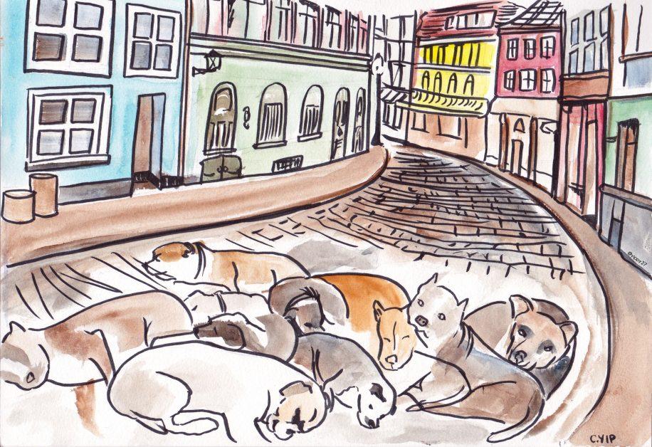illustration_pitbulls-in-quebec_carolyn-yip