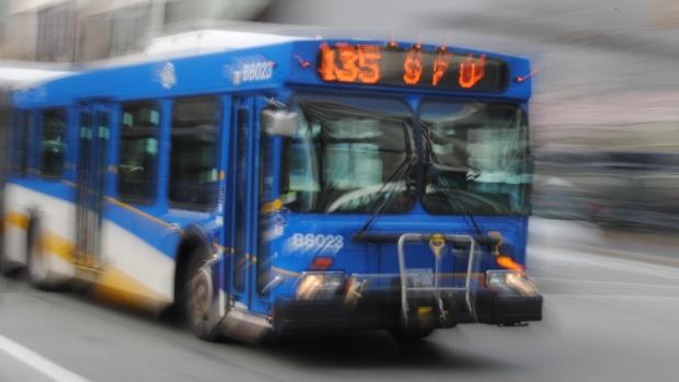 transit-bus-translink